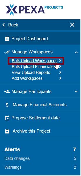 bulk_upload_ws.png